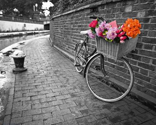 Bicycle of Love I von Assaf Frank
