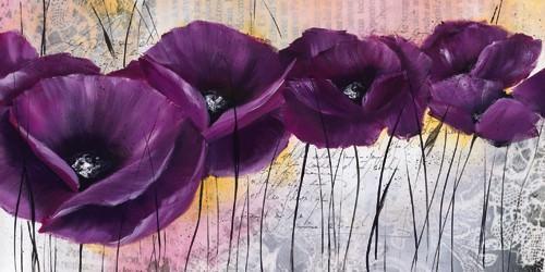 Pavot violet I von Isabelle Zacher-Finet