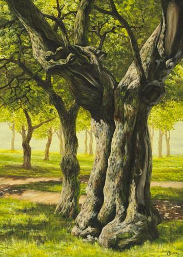 Klosterbaum von Cornelia Richter