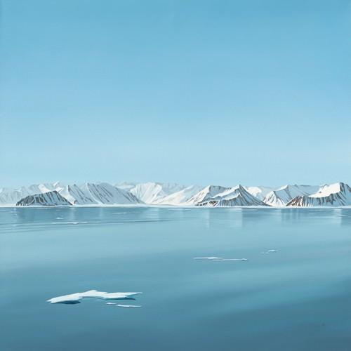 Arctic silence von Dawn Reader