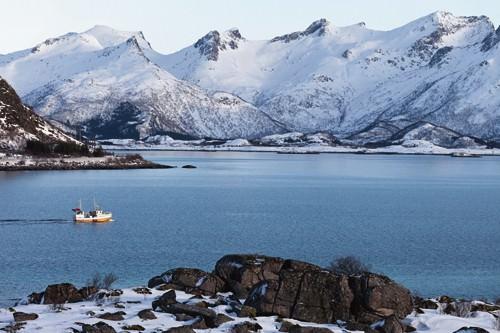 Fischerboot Lofoten von Rolf Fischer