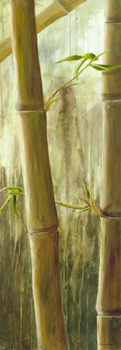 Rainforest III von Maritta Haggenmacher