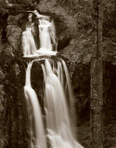 Kentucky Falls von Alan Majchrowicz