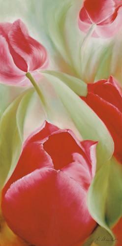Tulpen II von Annette Schmucker