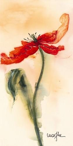 Tulipe II von Marthe