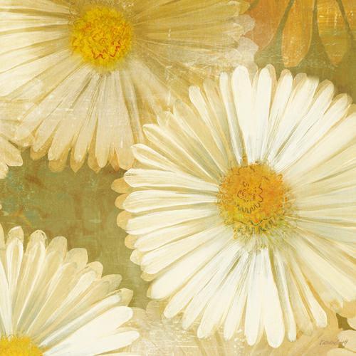 Daisy Story Square I von Kathrine Lovell