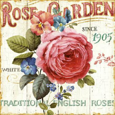 Rose Garden I von Lisa Audit