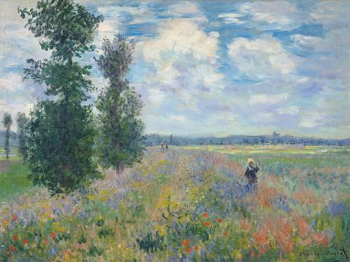 Les Coquelicots (dintorni di Argenteuil) von Claude Monet