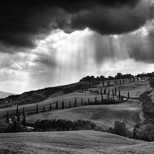 Hills of Tuscany von Maciej Duczynski
