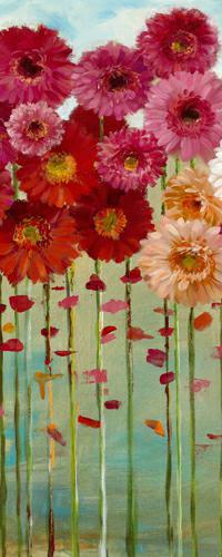 Daisies Spring II von Danhui Nai