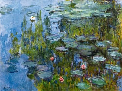 Seerosen (Nympheas) von Claude Monet