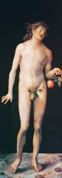Adam von Albrecht Dürer