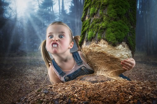 Just a little Beaver von John Wilhelm is a Photoholic
