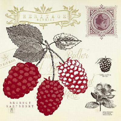 Raspberry Notes von Studio Mosseau