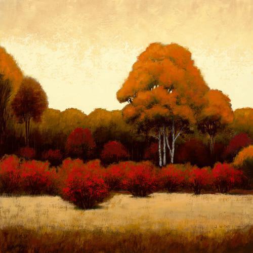 Autumn Forest I von James Wiens