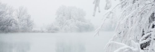 Winterlandschaft I von Peter Hillert
