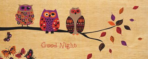 Good Night Owl von Wild Apple Portfolio