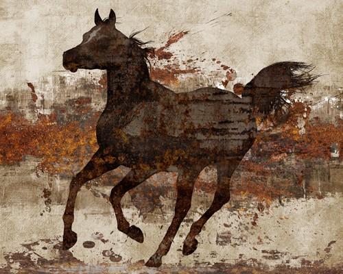 Running Free II von Conrad Knutsen
