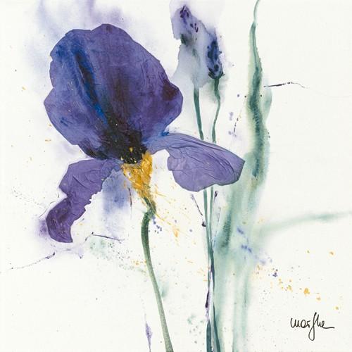 Iris I von Marthe