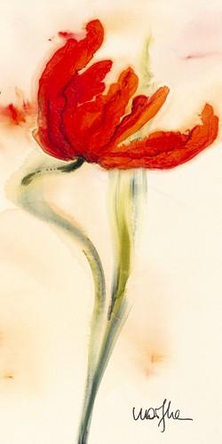 Tulipe I von Marthe