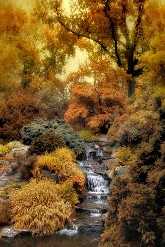 Japanese Rock Garden von Jessica Jenny