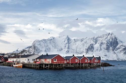 Fischerhetten Lofoten Nehe Reine von Rolf Fischer