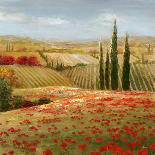 Tuscan Cypress II von Nan