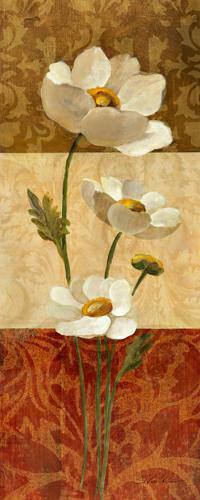 Anemone and Squares von Silvia Vassileva