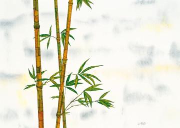 Bambus von Michael Ferner