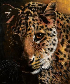 Leopard von Jutta Plath