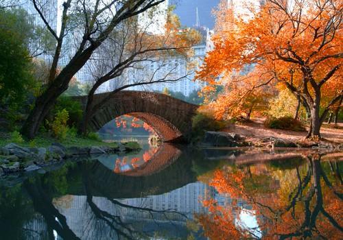 Gapstow Bridge, Fall von Michael Chen
