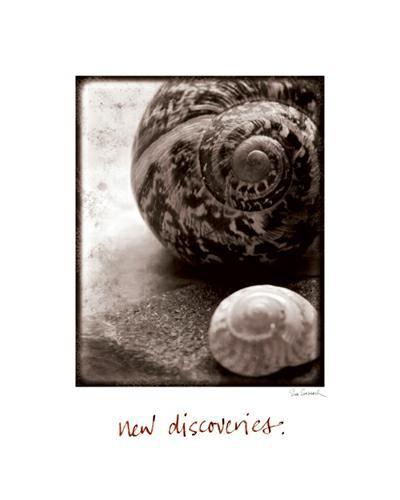 New Discoveries von Sue Schlabach