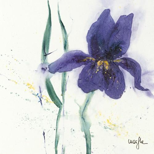 Iris II von Marthe