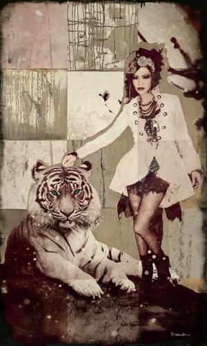 Tigerfrau von Shirin Donia