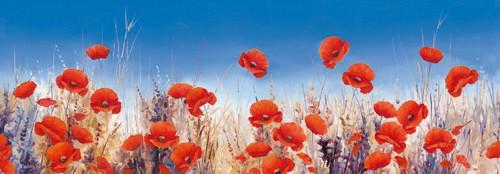 Poppy Landscape von Hilary Mayes