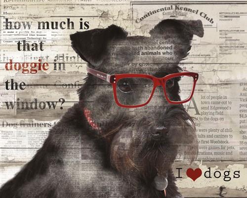 Doggie in Window von Carol Robinson