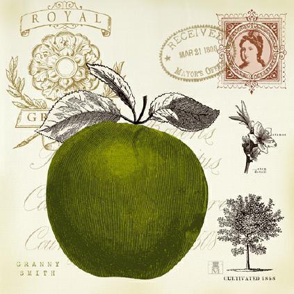 Apple Notes von Studio Mosseau
