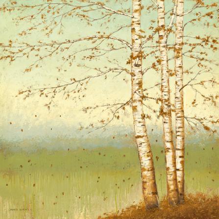 Golden Birch II with Blue Sky von James Wiens