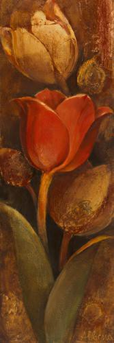 Tulip Shadow II von Albena Hristova
