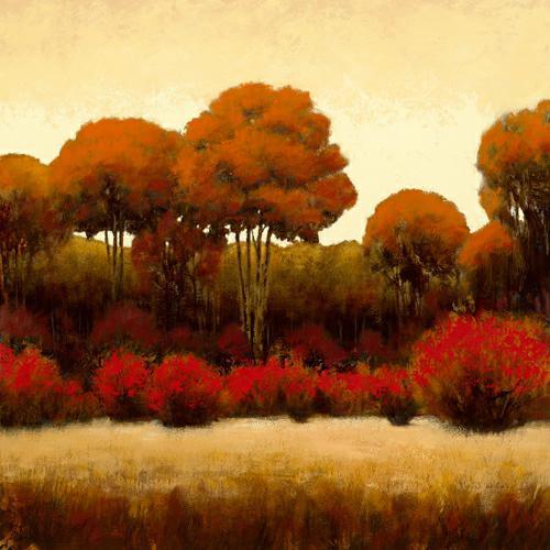 Autumn Forest II von James Wiens