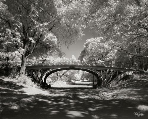 Central Park Bridge von Ralf Uicker