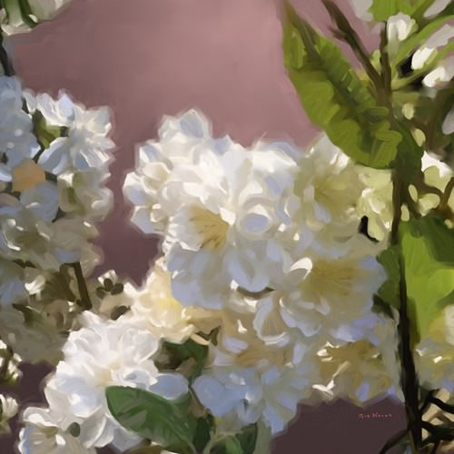 Roses II von Rick Novak