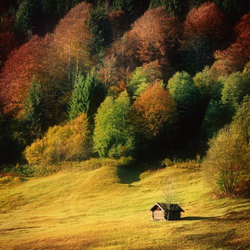 Nature Art Color II von Uwe Steger