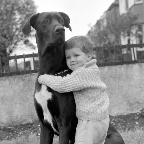 A Child with dog von Anonym