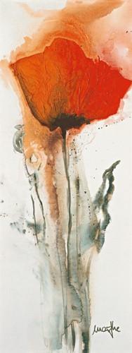 Mohnblumen I von Marthe