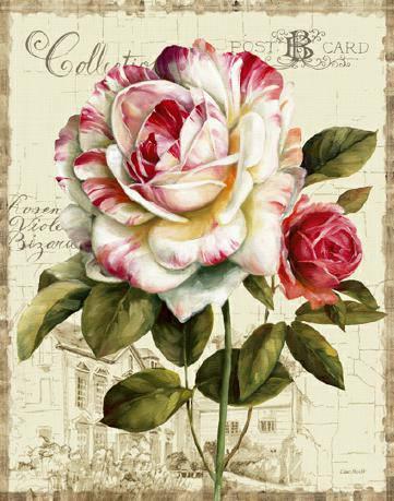 Garden View III - Rose von Lisa Audit