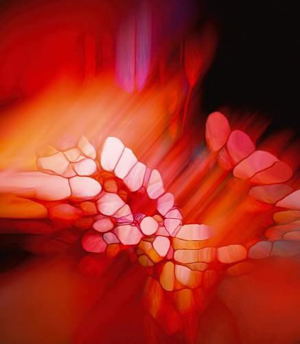 Expression in Rot von Renate M. Schmidt