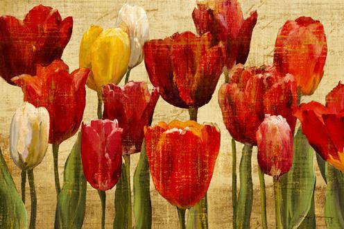 Tulip Fantasy on Cream von Marilyn Hageman