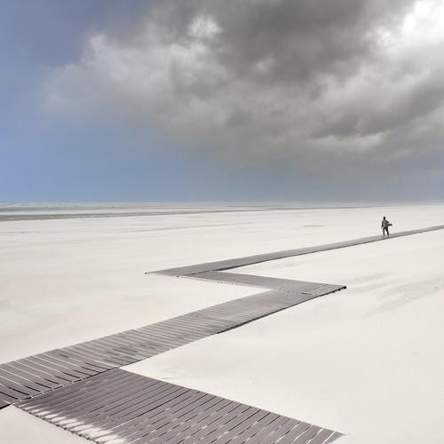Le marcheur solitaire von Georges-Felix Cohen