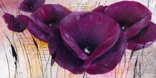 Pavot violet II von Isabelle Zacher-Finet